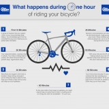 What Happens To Your Body When You Bike?